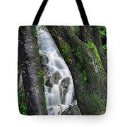 Waterfall In Cradle Mountain Tote Bag