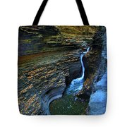 Watkins Glen Gorge Tote Bag