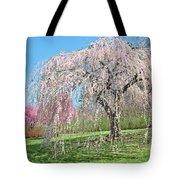 Weeping Cherry Tree Tote Bag