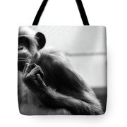Welcome To The Zoo Tote Bag