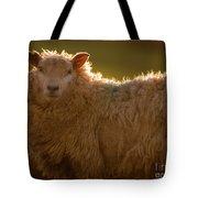 Welsh Lamb In Sunny Sauce Tote Bag