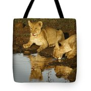 We're Thirsty Tote Bag