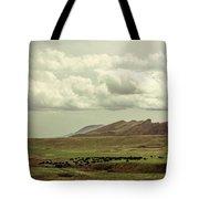 Western Storm Tote Bag