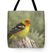 Western Tanager Tote Bag