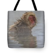 What's Up? Tote Bag