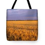 Wheat Crop In A Field, North Dakota, Usa Tote Bag