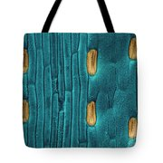 Wheat Leaf Stomata, Sem Tote Bag