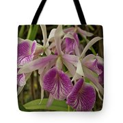 White And Purple Orchids Tote Bag