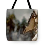 White Breasted Nuthatch In The Snow Tote Bag
