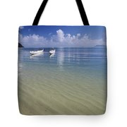 White Double Hull Canoe Tote Bag