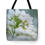 White Flower Close-up Tote Bag