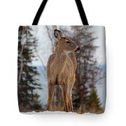 White-tailed Deer Three Tote Bag