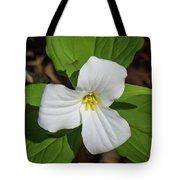 White Trillium 3 Tote Bag