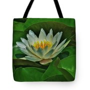 White Water Lily Tote Bag