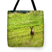 Whitetail Deer And Hay Rake Tote Bag