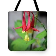 Wild Angel Tote Bag