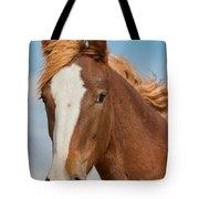 Wild Foal Tote Bag