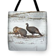 Wild Turkey - Meleagris Gallopavo Tote Bag