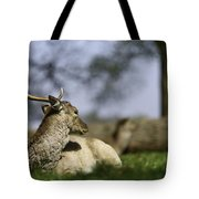 Wildlife  Tote Bag