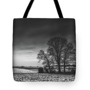 Winter Fields Tote Bag