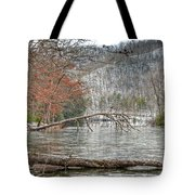 Winter Landscape At Hungry Mother State Park Tote Bag