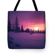 Winter Lanscape With Sunset, Trees And Cliffs Over The Snow. Tote Bag