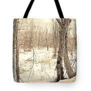 Winter Scene, Montgomery County, Pennsylvania Tote Bag