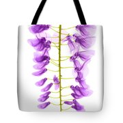 Wisteria Flowers, X-ray Tote Bag