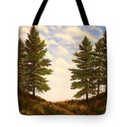 Wooded Path Tote Bag