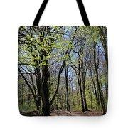 Woodland Walk England Tote Bag
