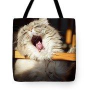 Yawning Cat Tote Bag