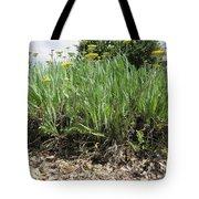 Yellow Blooms Tote Bag