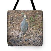 Yellow Crowned Night Heron At Tidal Creek Tote Bag