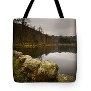 Yew Tree Tarn Tote Bag