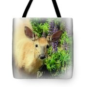 Young Buck Among The Lupin Tote Bag