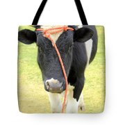 Young Bull In A Field Tote Bag