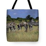 Zebra Group Tote Bag