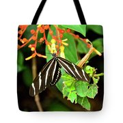 Zebra Longwing On Firebush  Tote Bag