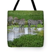 Zebras In The Swamp Tote Bag
