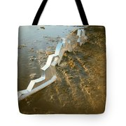 Zinc Sculptures On The Beach At Sunset Tote Bag