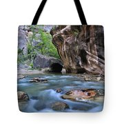 Zion National Park Narrows Tote Bag