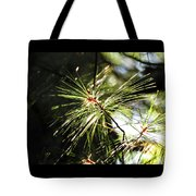 10-15-16--0747 Don't Drop The Crystal Ball Tote Bag