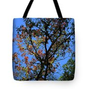 10-15-16--0776 Blue Sky # 2 Don't Drop The Crystal Ball Tote Bag