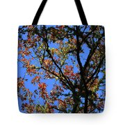 10-15-16--0777 Blue Sky # 3 Don't Drop The Crystal Ball Tote Bag