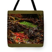 10-15-16--0823 Don't Drop The Crystal Ball Tote Bag
