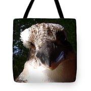 Australia - Kookaburra Up Close Tote Bag