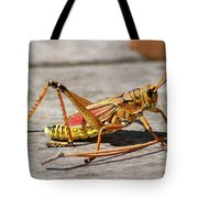 10- Lubber Grasshopper Tote Bag