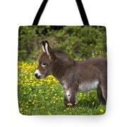 Miniature Donkey Foal Tote Bag