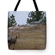 10 Point Buck Heads West Tote Bag
