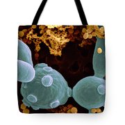 Saccharomyces Cerevisiae Tote Bag